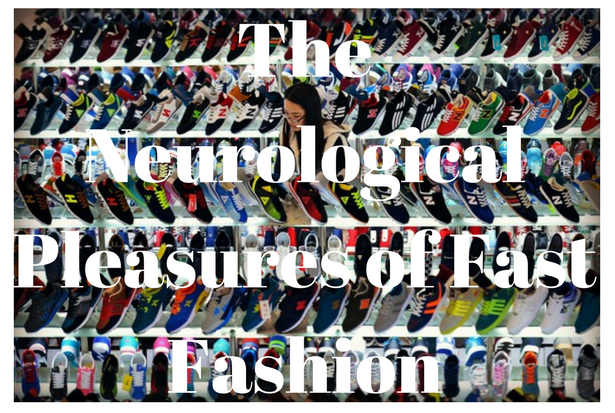 the-neurological-pleasures-of-fast-fashion-3